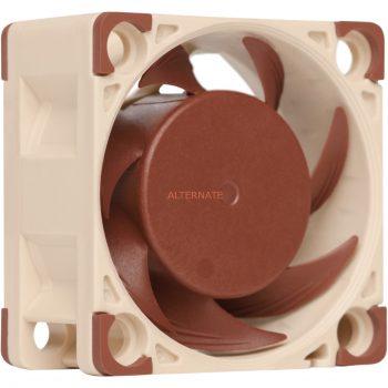 Noctua NF-A4x20 5V, Gehäuselüfter Angebote günstig kaufen