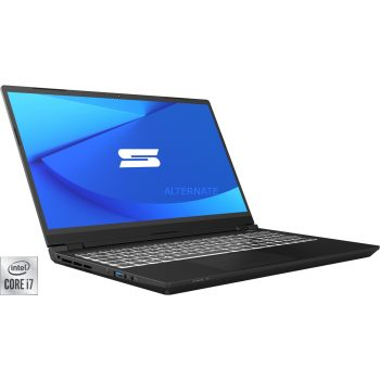 Schenker KEY 15 (10505768), Gaming-Notebook Angebote günstig kaufen