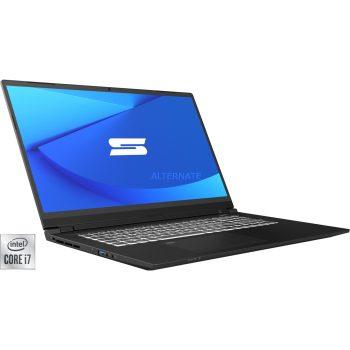 Schenker KEY 17 (10505772), Gaming-Notebook Angebote günstig kaufen