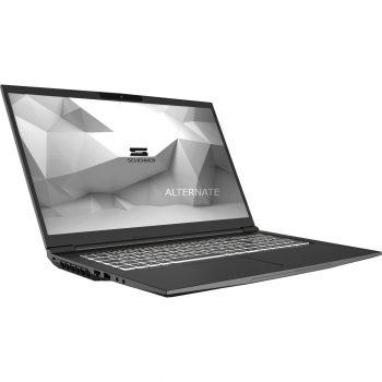 Schenker MEDIA 17 (10505431), Gaming-Notebook Angebote günstig kaufen