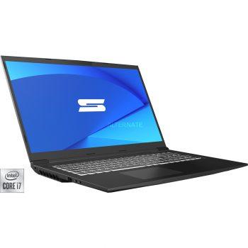 Schenker MEDIA 17 (10505764), Gaming-Notebook Angebote günstig kaufen