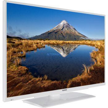 Telefunken XF43G511-W, LED-Fernseher Angebote günstig kaufen